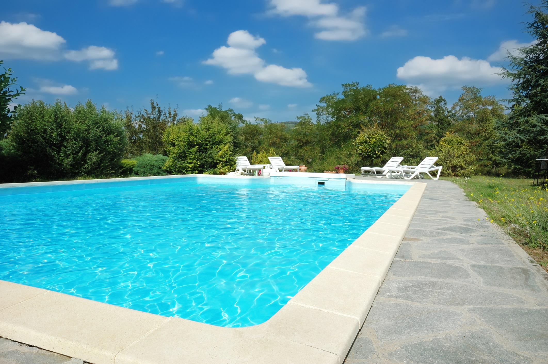 Home swimming pool with grass and trees surrounding it